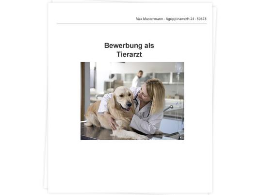 Tierarzt Bewerbung Tipps Zu Anschreiben Und Lebenslauf